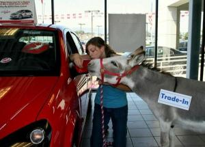 "SaturnFans.com Members Win in the Saturn ""Kiss My Astra"" Online Photo Contest"